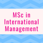 MSc in International Management